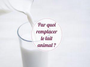 Alternatives lait animal